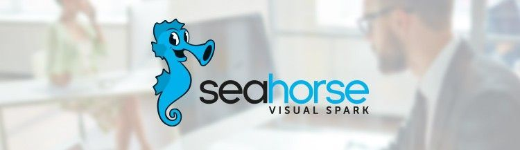 R Notebook and Custom R Operations in the new Seahorse release